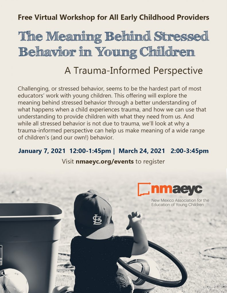 A flyer for the trauma-informed training virtual workshop